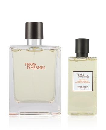Набор (туалетная вода 100 мл + гель для душа 80 мл) Hermes Terre D`Hermes