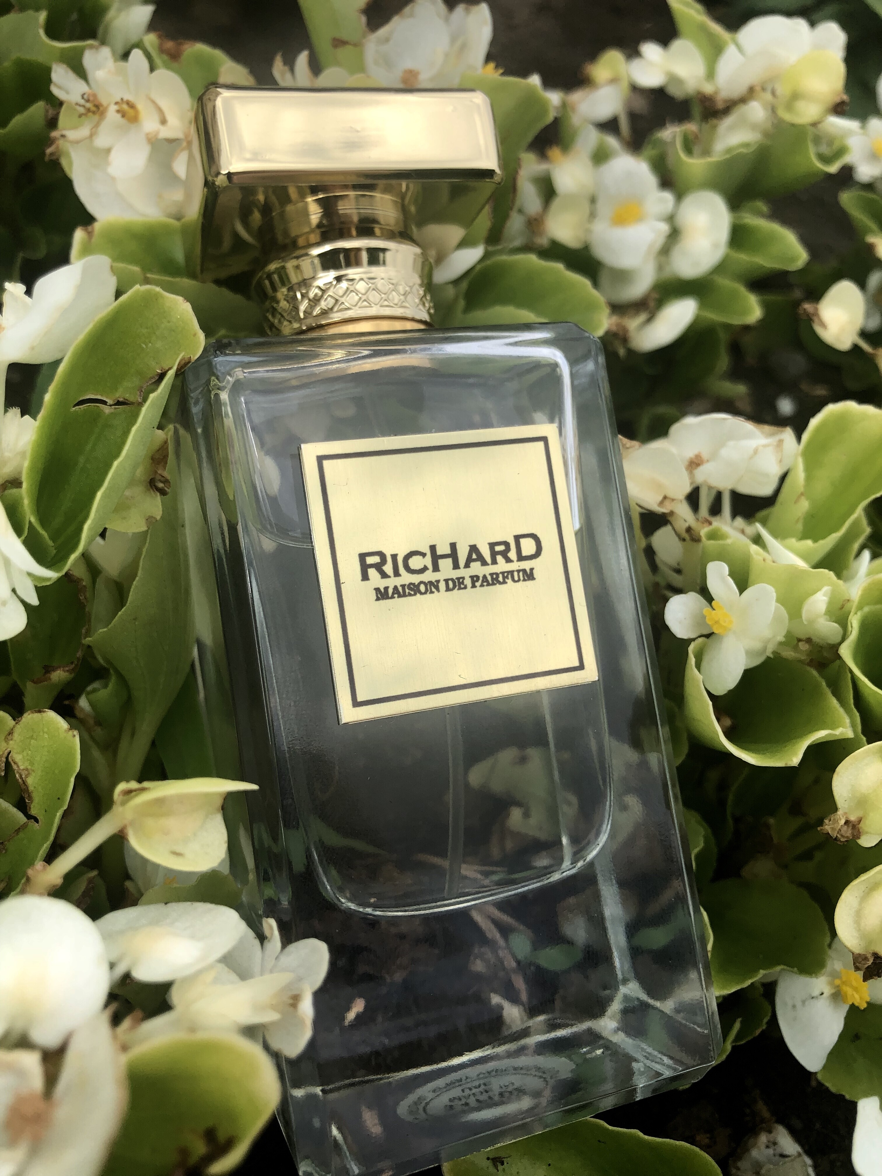 Richard Richard for Women